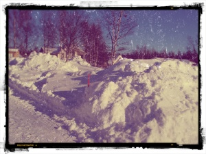 Vinter till blogg
