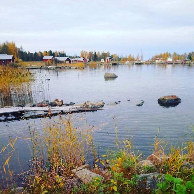 #fall #autumn #syksy in #Finland #kvarken #worldheritage #nature #atitsbest
