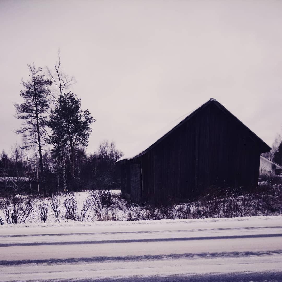 svartvitt