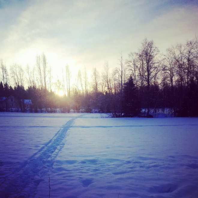 #january2018 #sunday #dogwalk #fivedegreesbelowzero #thisisfinland