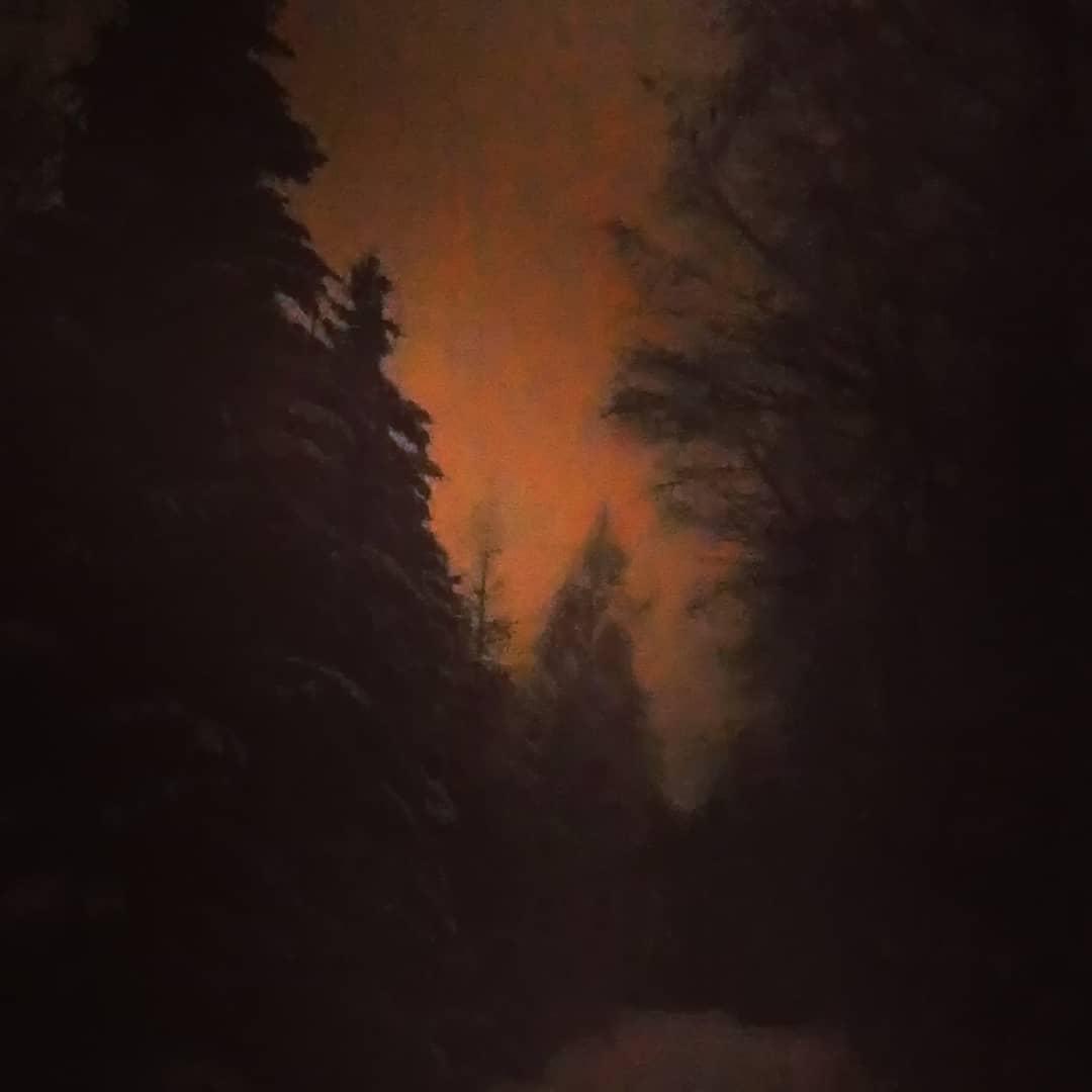 Utan blixt i enslig skog - nästan som en målning. #art #photo or #painting?